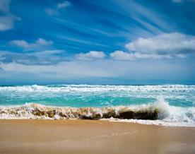 скачать торрент шум моря - фото 10